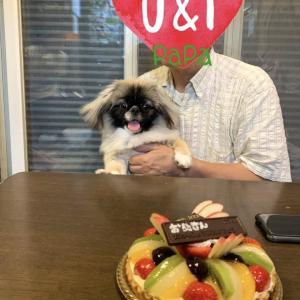 ケーキを見つめる誕生日会。