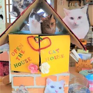 猫愛いっぱいの貯金箱