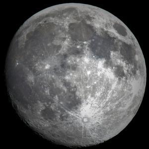 満月の夜に!!(* ´ ꒳ `*  )