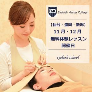 【11月・12月】無料体験レッスン開催日のお知らせ♪