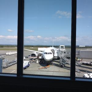 コロナ禍に飛行機で遠方に出かけるのがすごく大変で色々あったり、感じたことと初イケア