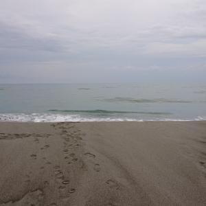 坪井海岸へGO