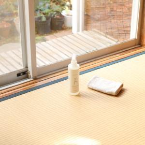 一歩ずつ大掃除...窓掃除できました!