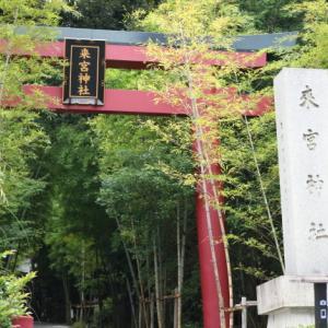 初めての...熱海「来宮神社」