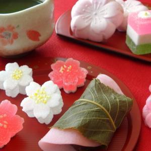 【4月・卯月】この季節をより楽しめる茶道具やお菓子を使うと特別感がアップ!