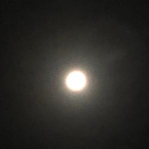 月見など少し