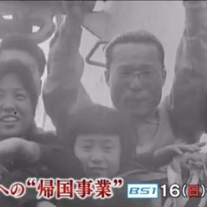 "NHKドキュメンタリー「北朝鮮への""帰国事業""知られざる外交戦・60年後の告白」を見て"