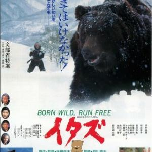人の味を覚えてしまった熊は殺すしかない