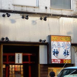 十日戎って言われても、大阪以外の人はわからない?♪LvB/Sym3