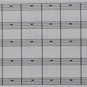 譜面の指示に従い休みます♪ヤナーチェク/シンフォニエッタ