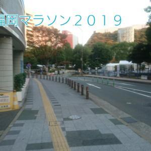 19☆11月10日【福岡マラソン応援ドキュメント!①】