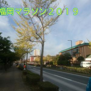 19●11月10日【福岡マラソン】