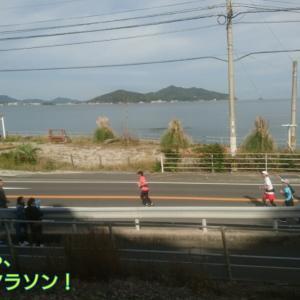 19☆11月10日【福岡マラソンドキュメント!③】