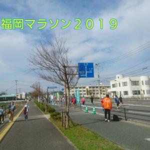 19☆11月10日【福岡マラソン応援ドキュメント!④】