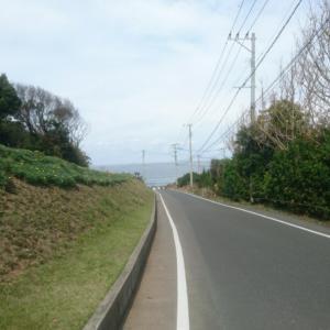 19☆11月10日【福岡マラソンドキュメント!⑤】
