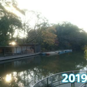 19@[donkobune]12月01日【観光客が来る前のどんこ舟の朝8時】