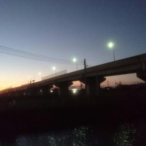 19@[yanagawa]12月07日【徳益夕景】