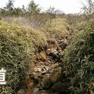 20@03月29日【ターチャンと登山】