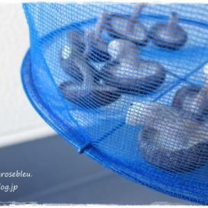 干し椎茸を作る