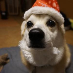 メリークリスマスだっぺ!