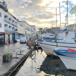 イスキア島の漁港にあるシーフードレストランで遅めのランチ。