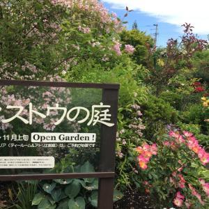 十和田ティストゥの庭へ
