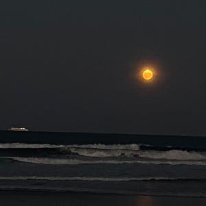 中秋の名月は満月