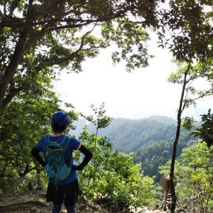 真夏の朝活登山②比叡山