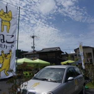 保護猫たちの譲渡会『ねこメルカート』開催!保護犬も参加