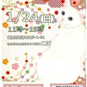 1月24日(日)甲賀市と湖南市で譲渡会