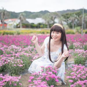 お花畑で夏を感じました