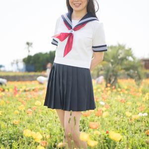 綺麗なポピーのお花畑(その2)