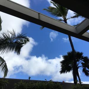 ハワイ 10月15日から自己隔離基準を緩和!