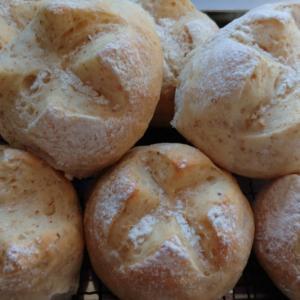 紅葉してきた多肉たち・手作りパン