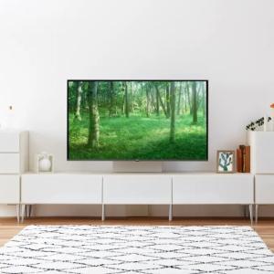 テレビ周りをおしゃれにする方法!1LDKマンションのコーディネート事例8