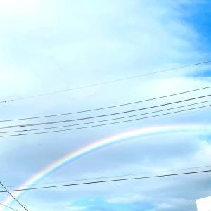 虹(๑・㉨・๑)