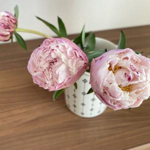 花のある暮らし~リベンジの芍薬。& ファッション最大30%オフ♪
