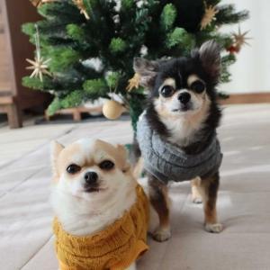 クリスマス雑貨を片付けたら、お部屋も気分もスッキリ!