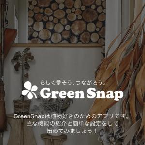 グリーンや花の名前が分かる!植物好きのアプリ~Green Snap