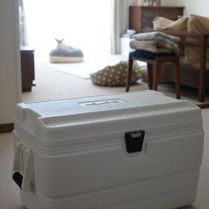 災害対策にハードクーラーボックスを。 &  バッグインバッグでシンプルバッグも機能的に!