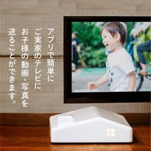 NHK「まちかど情報室」:「まごチャンネル」