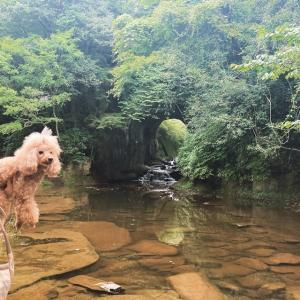 クレオくんと千葉県のあの洞窟へ♡