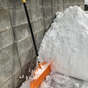 記録的少雪