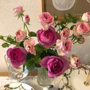 22輪のバラ
