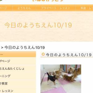 犬の幼稚園!2020年10月19日