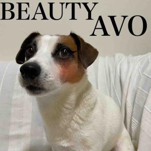 AVO愛用のアイライナーを紹介するわ。