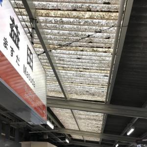 益田→新山口:山口線走破・津和野・長門峡散策