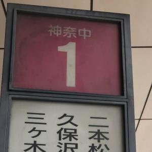 津久井湖散策・城山(標高375m)登頂記