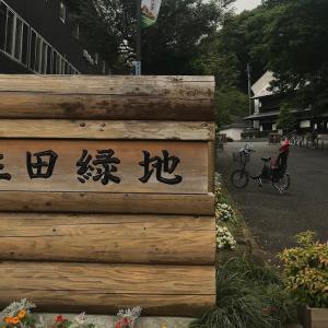 梅雨入りの生田緑地散策