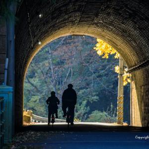 遠征ご飯とカメラ(2019奥多摩編)